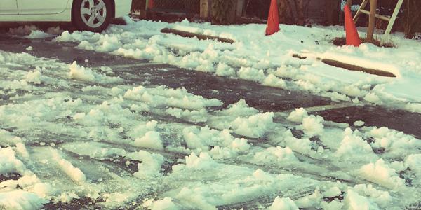 雪が多い知床
